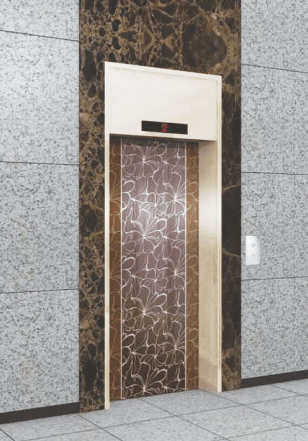 VRS Elevators Door : lift door - pezcame.com